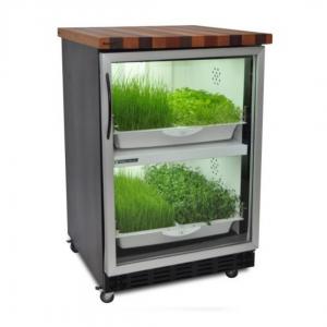 Домашний гроубокс для выращивания микрозелени Урбан Культиватор